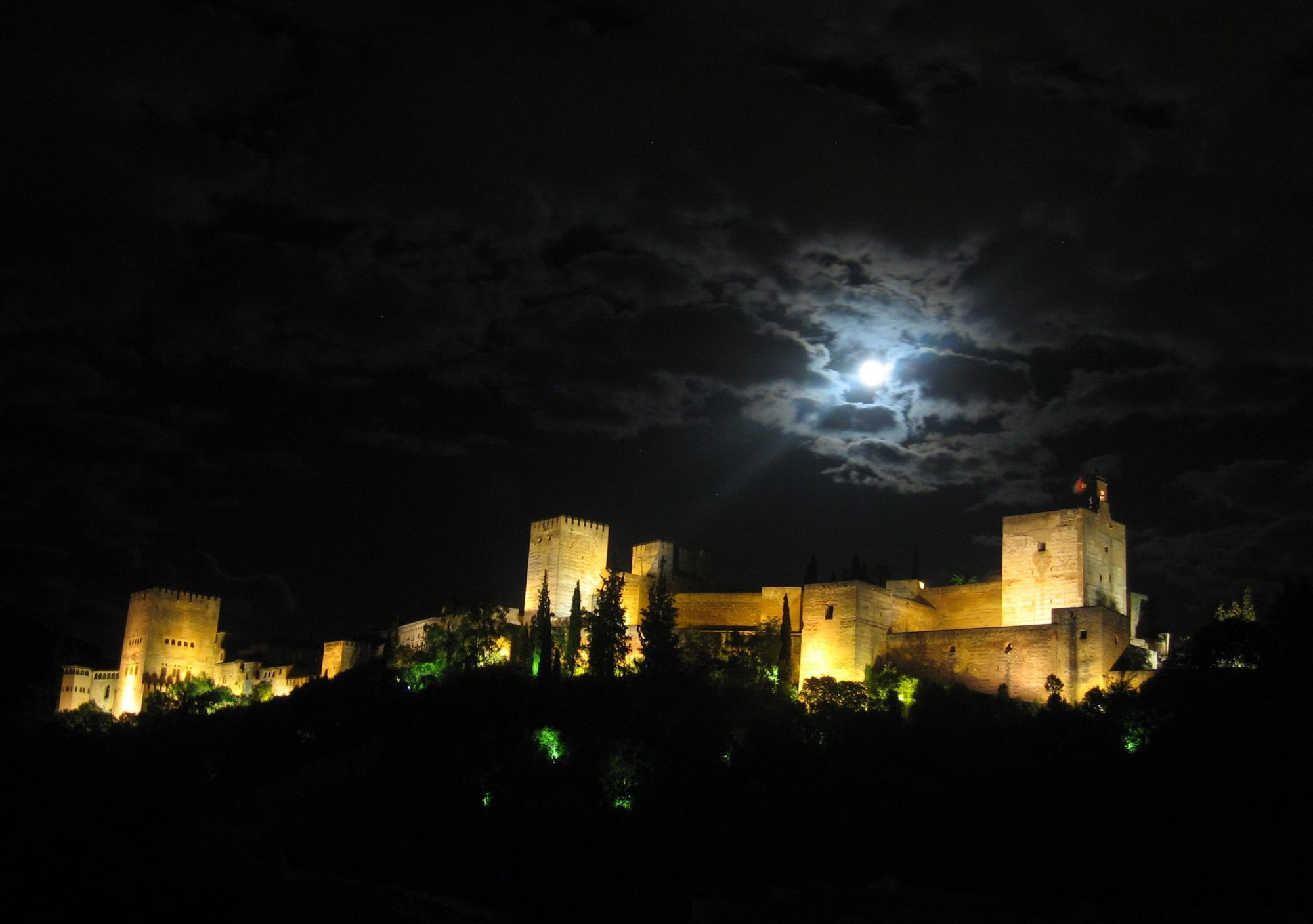 Night guided tour Visit to the Alhambra Nasrid Palaces lions court